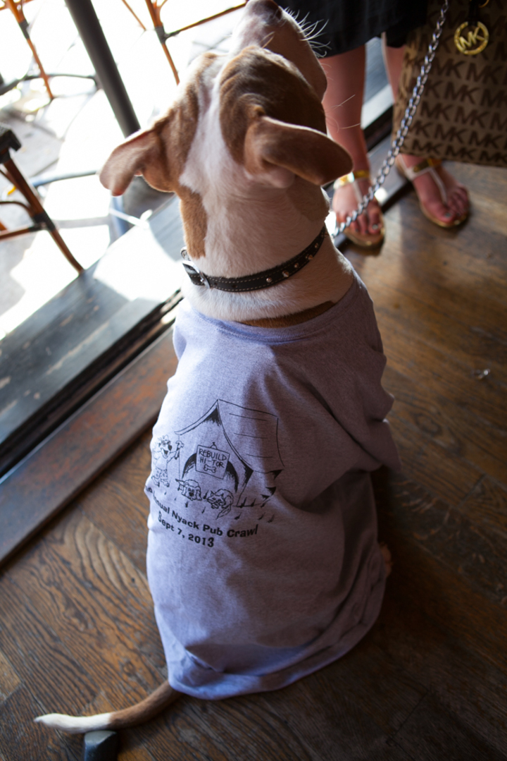 2013 Nyack Pub Crawl Mascot T-Shirt Photo