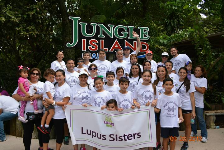Lupus Sisters...Beating Lupus One Step At A Time T-Shirt Photo