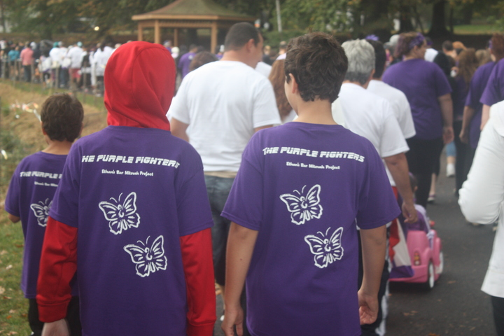 Walk To End Lupus Now T-Shirt Photo
