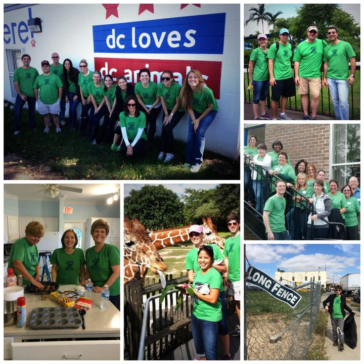Service Day 2013 T-Shirt Photo