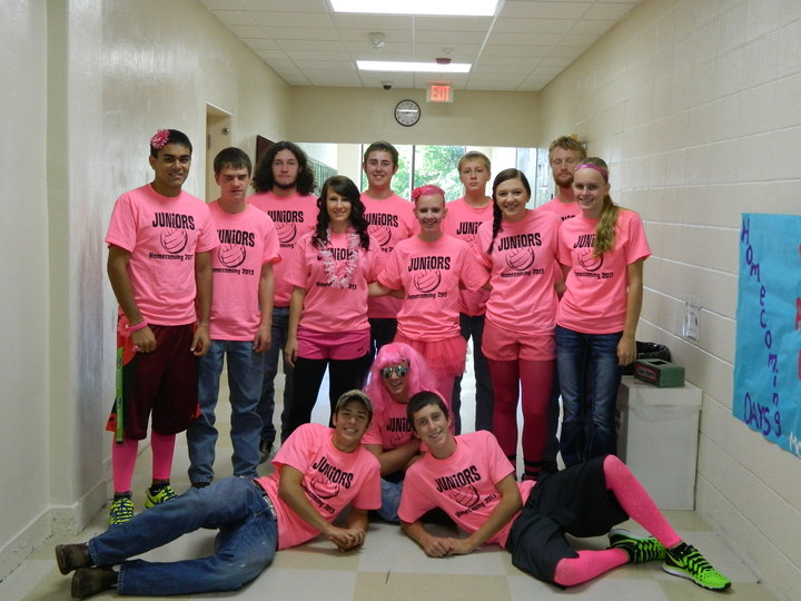 Homecoming 2013 T-Shirt Photo