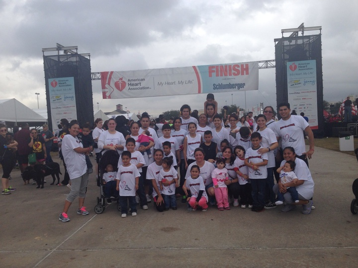 Team Daniella Heart Walk 2013 T-Shirt Photo