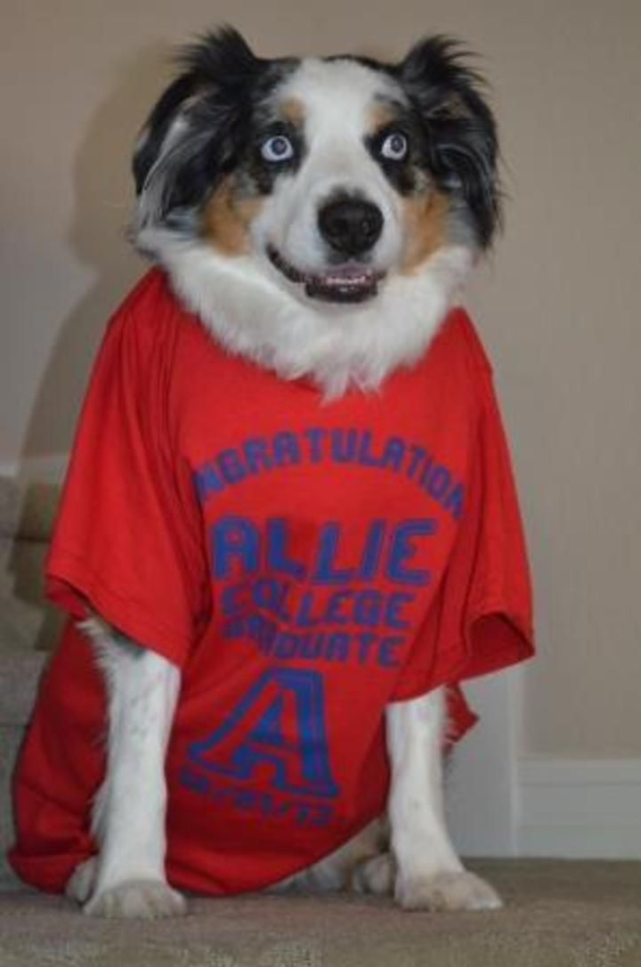 Riley Got In On The Action T-Shirt Photo