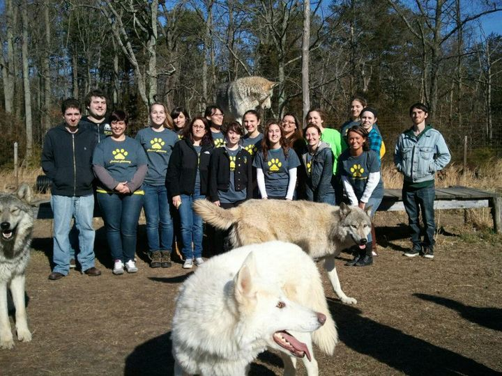 Trip To The Wolf Rescue! T-Shirt Photo