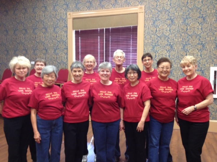 Falls Run Line Dancers T-Shirt Photo