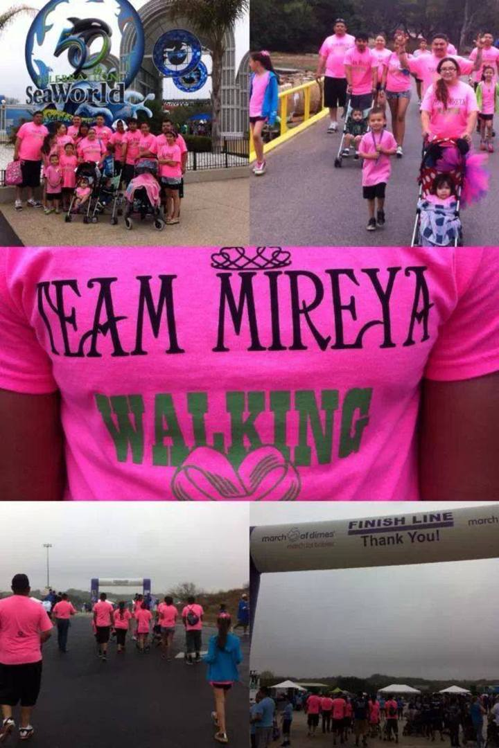 Team Mireya T-Shirt Photo