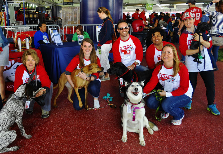 Fetch! Pet Care & The Nationals At Pups In The Park T-Shirt Photo