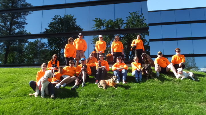 Team Follow Me Dog Training For Ms Walk: Richmond T-Shirt Photo