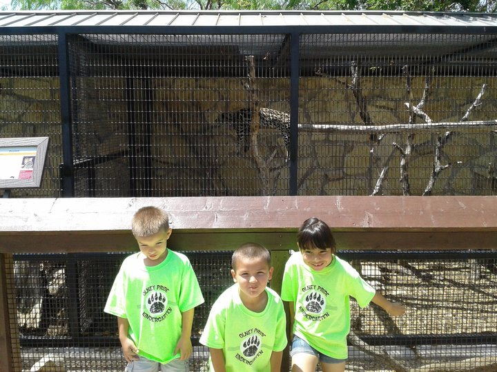 Olney K Zoo Shirts T-Shirt Photo