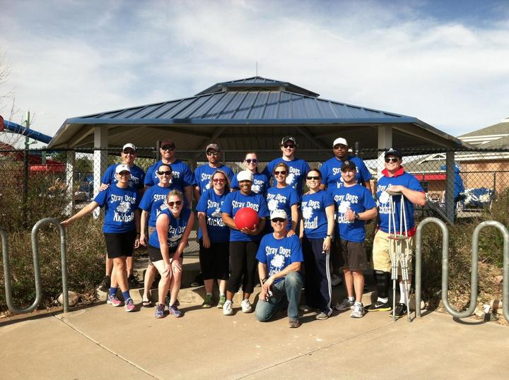 Stray Dogs Adult Co Ed Kickball Parker, Co T-Shirt Photo