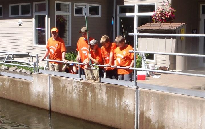 Hard Working Volunteers T-Shirt Photo