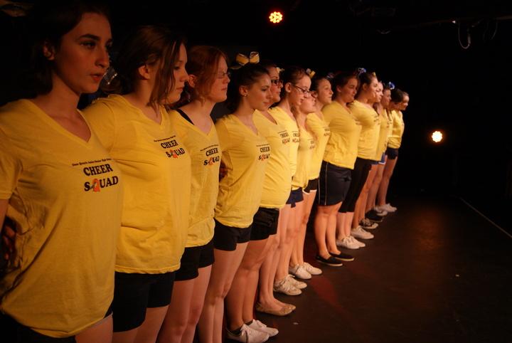 The Quayle Quail Cheerleaders In 13, The Musical! T-Shirt Photo