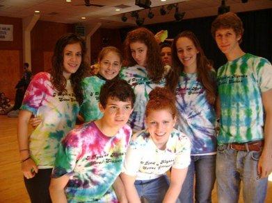 I Dyed At Alyssa's Sweet Sixteen T-Shirt Photo