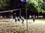 Volleyball(2)__8-7-14