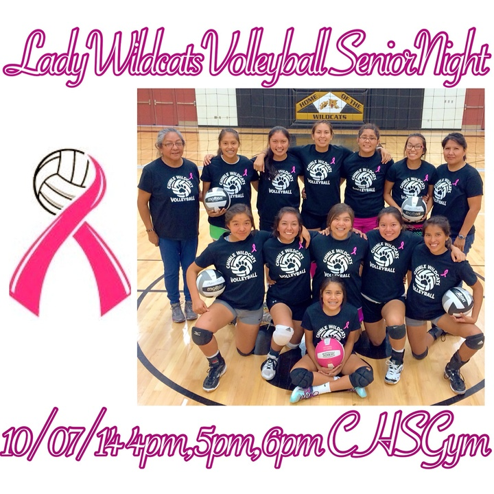 Lady Wildcats Volleyball T-Shirt Photo