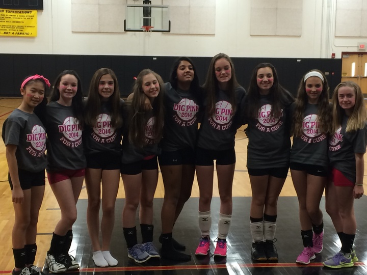 Dig Pink Volleyball T-Shirt Photo