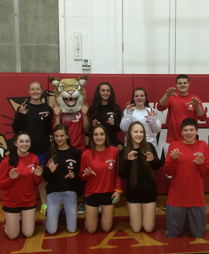 Wildcat Spirit! T-Shirt Photo