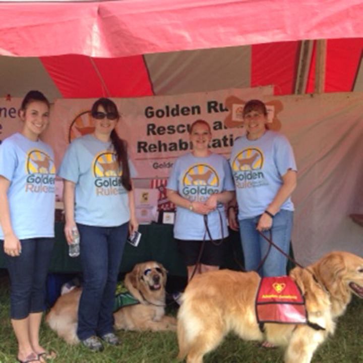 Dog Fest 2015 T-Shirt Photo