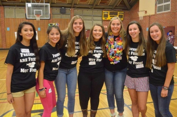 Nhs Link Crew T-Shirt Photo