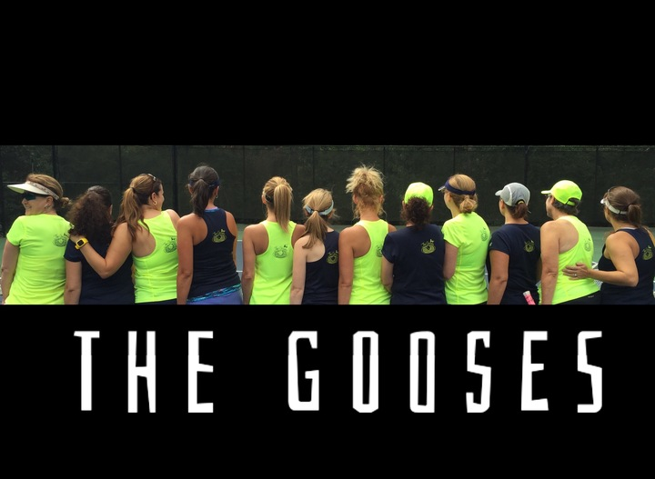 The Gooses T-Shirt Photo