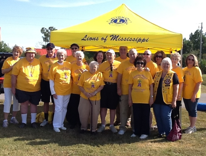 "Diamondhed Lions ""Walk For Sight"" 2015 T-Shirt Photo"