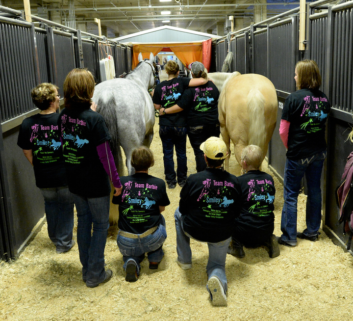 Quarter Horse Congress 2015 T-Shirt Photo