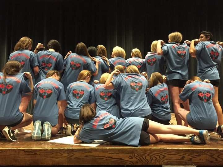 Aquapoms T-Shirt Photo