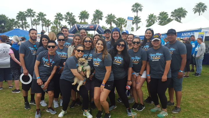 Team Xtina Jdrf One Walk 2016 T-Shirt Photo