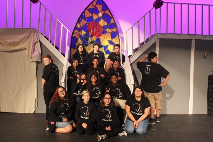 Dvhs Beauty And The Beast T-Shirt Photo