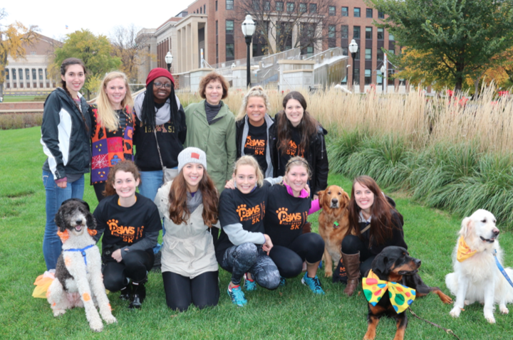 Paws For A Cause 5 K T-Shirt Photo