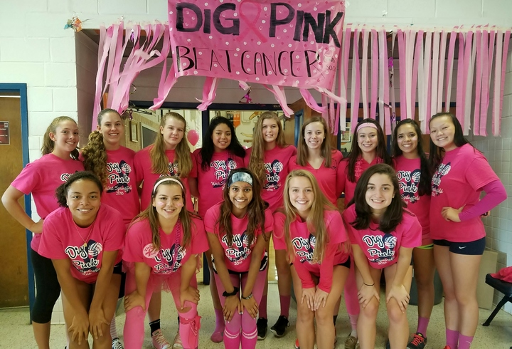 West Springfield Hs Dig Pink Rally T-Shirt Photo
