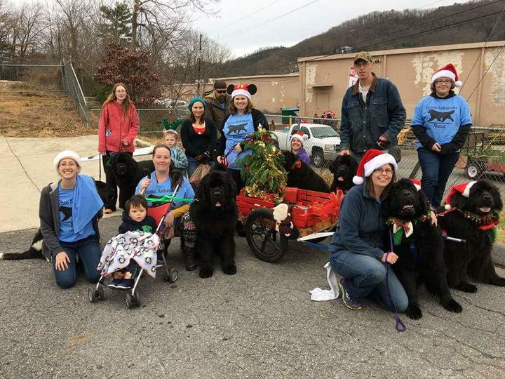 Black Mountain Christmas Parade T-Shirt Photo