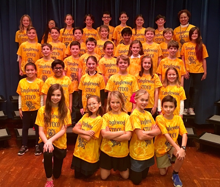 Tanglewood Tigers T-Shirt Photo