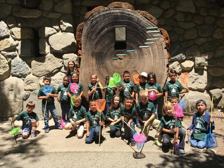 Exploring Yosemite National Park T-Shirt Photo