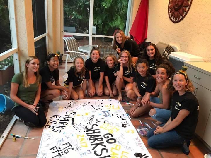 Sarasota Shark Girls T-Shirt Photo