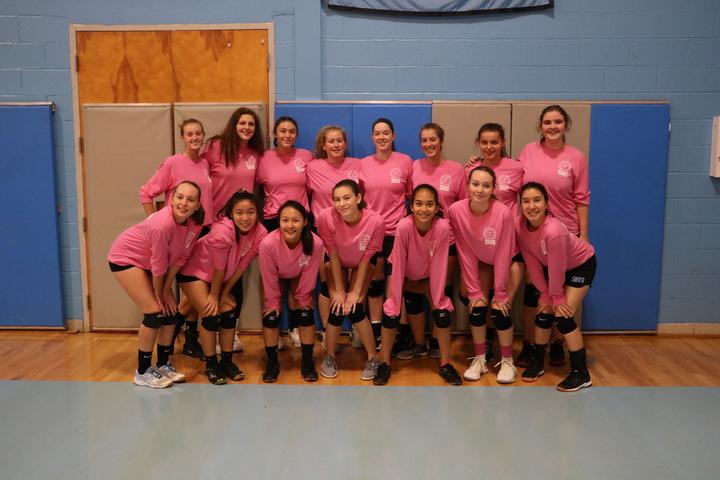 Sb Digs Pink! T-Shirt Photo