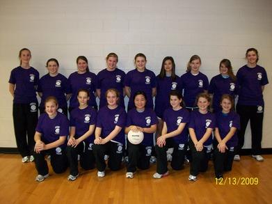 Elite Volleyball T-Shirt Photo