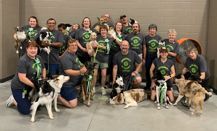 Alamo Racing Canines Flyball Group T-Shirt Photo