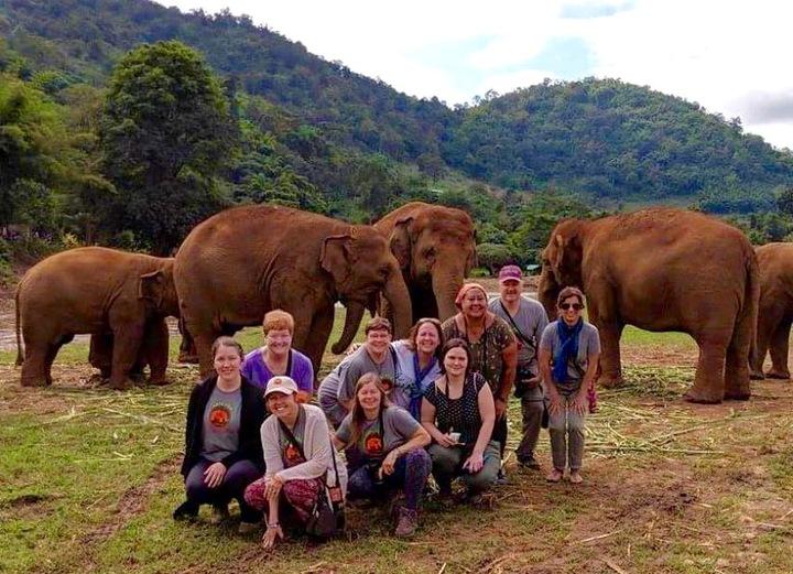 Big Elephant Magic Sanctuary Volunteer Group, Thailand! T-Shirt Photo