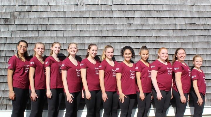 Nantucket Island Waves Open Juvenile Synchronized Skate Team 2019 2020 T-Shirt Photo