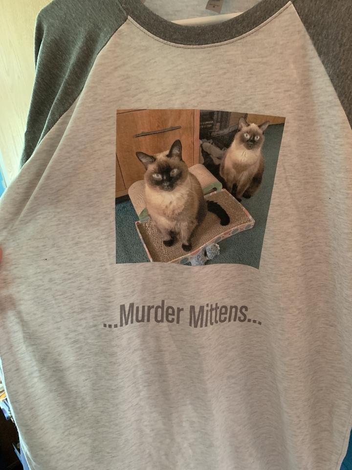 My Lil Ewoks!  T-Shirt Photo