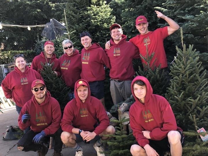 Honey Bear Trees Crew T-Shirt Photo