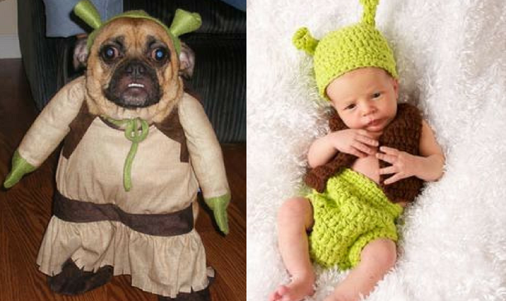 a dog and a baby dressed as shrek  sc 1 st  Dailybreak & Who Wore the Halloween Costume Better: Dogs Vs. Babies Edition