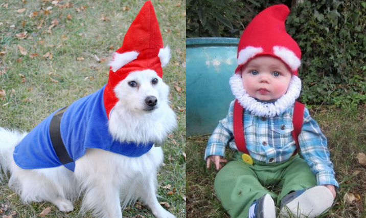 sc 1 st  Dailybreak & Who Wore the Halloween Costume Better: Dogs Vs. Babies Edition