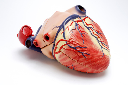 New St. Jude heart pumping device proves superior to older model: study