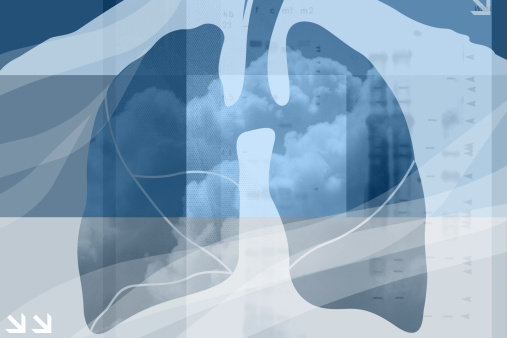 Czech scientists develop human lung model to aid treatments