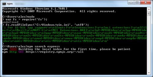 Using npm