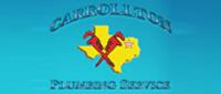 Website for Carrollton Plumbing Service