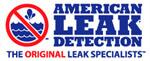 Website for American Leak Detection-DFW, Inc.