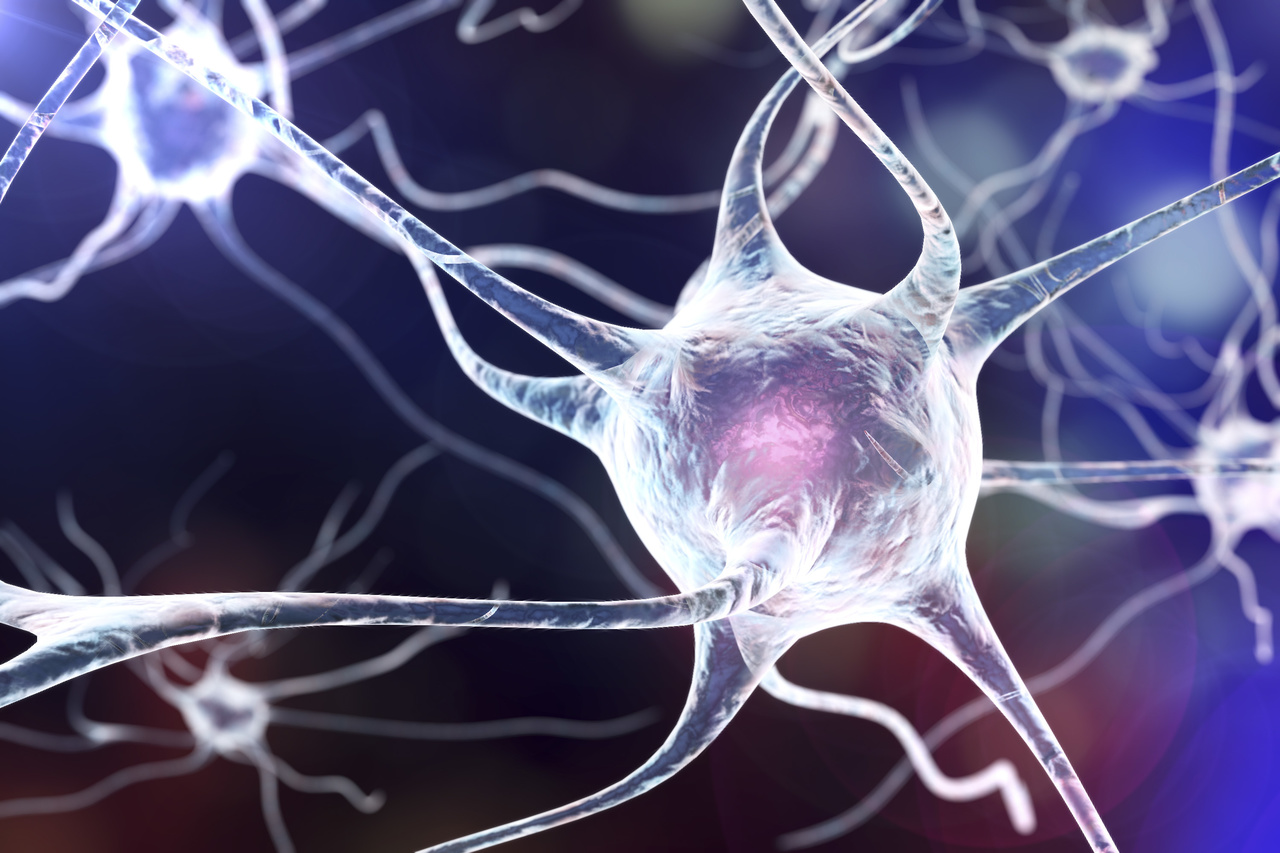 Molecular Link Between Aging and Rare Neurodegenerative Diseases Identified